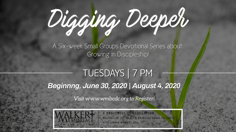 Digging Deeper - Small Groups Series